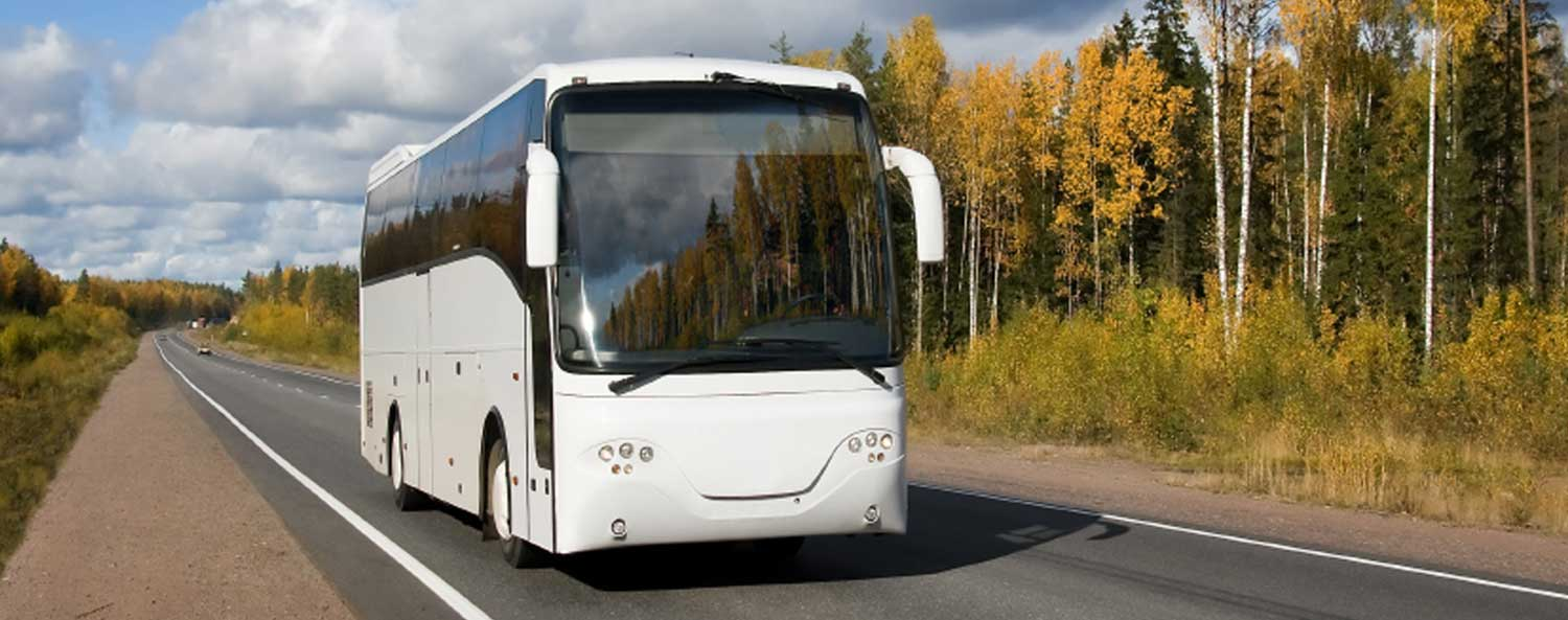 Image of a white commercial tour bus on a two-lane road surrounded by green and yello trees
